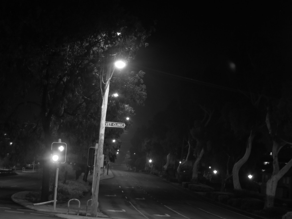 Foggy 6